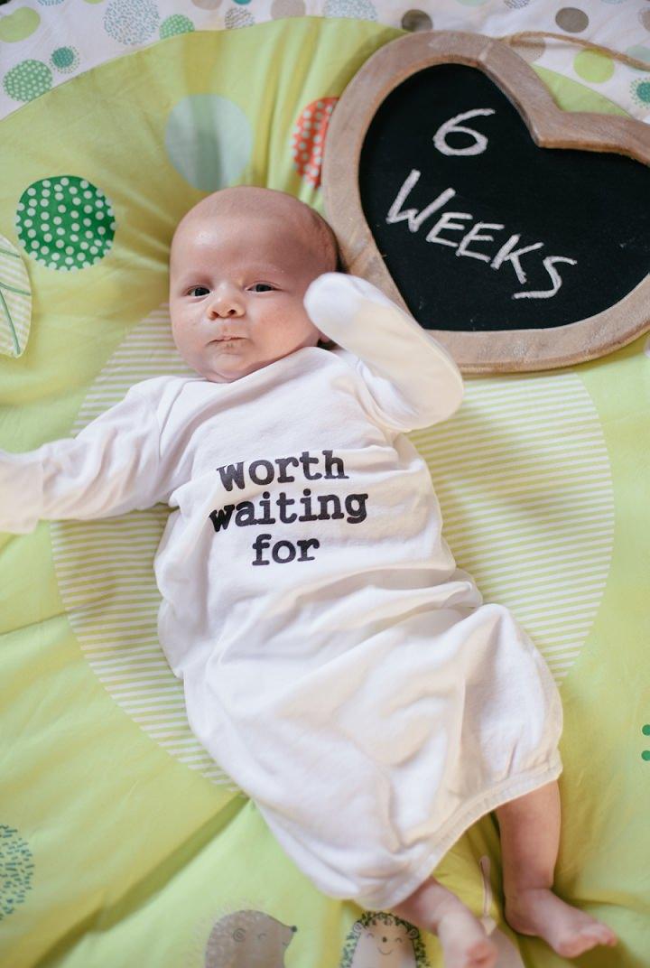 10 Dexter 2 - 8 Weeks