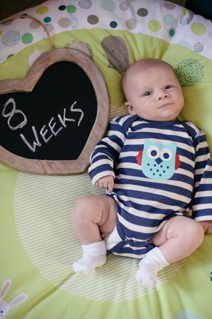 25 Dexter 2 - 8 Weeks