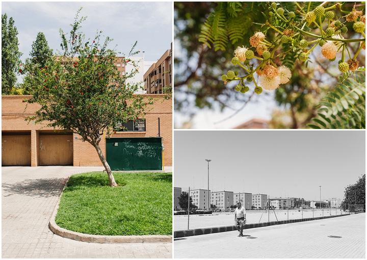 5 An Alternative Guide to Valencia from Babb Photos