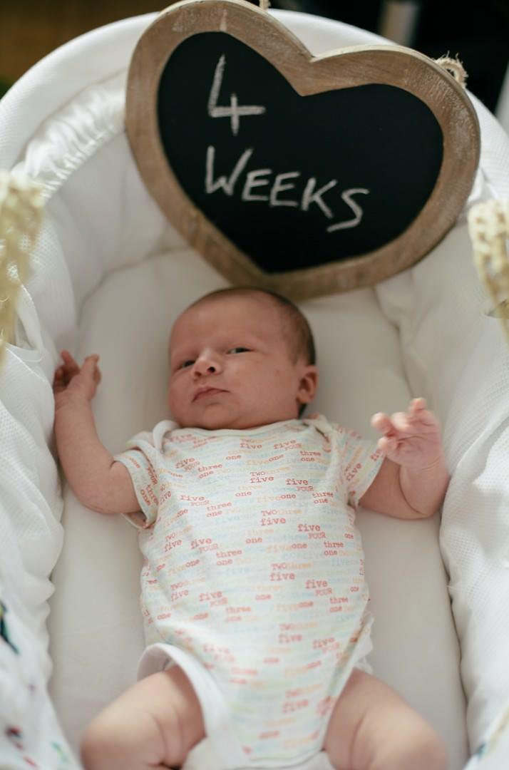 5 Dexter 2 - 8 Weeks