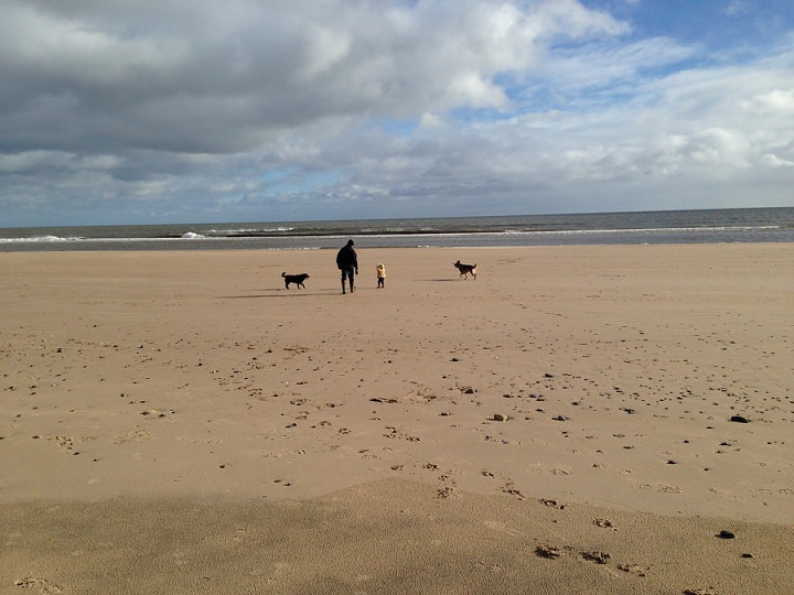 Northumberland - Great for kids and dogs