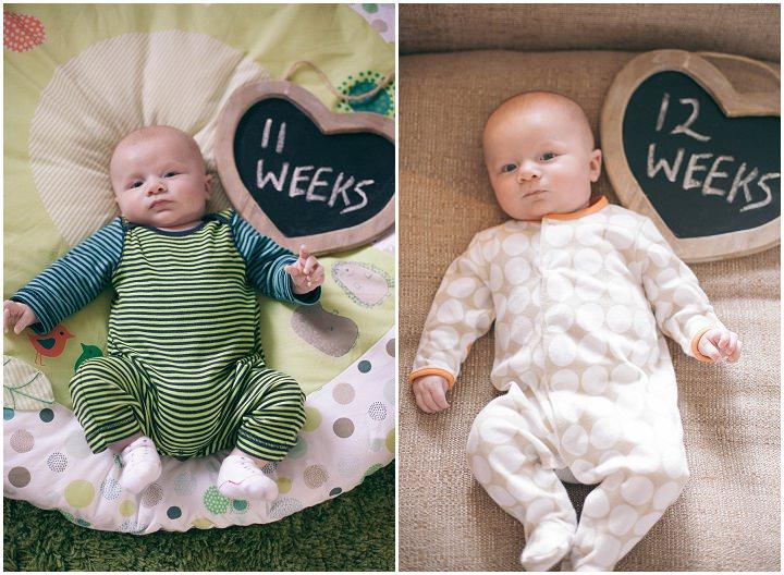 10 Dexter 2 - 6 months