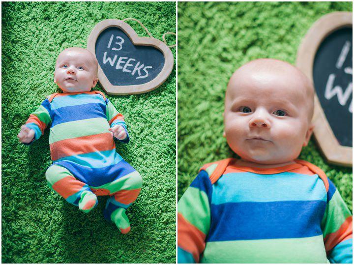 14 Dexter 2 - 6 months