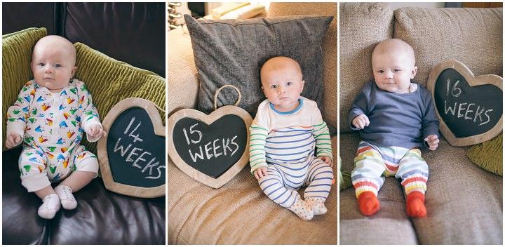 18 Dexter 2 - 6 months