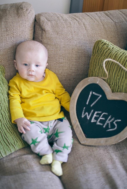 20 Dexter 2 - 6 months