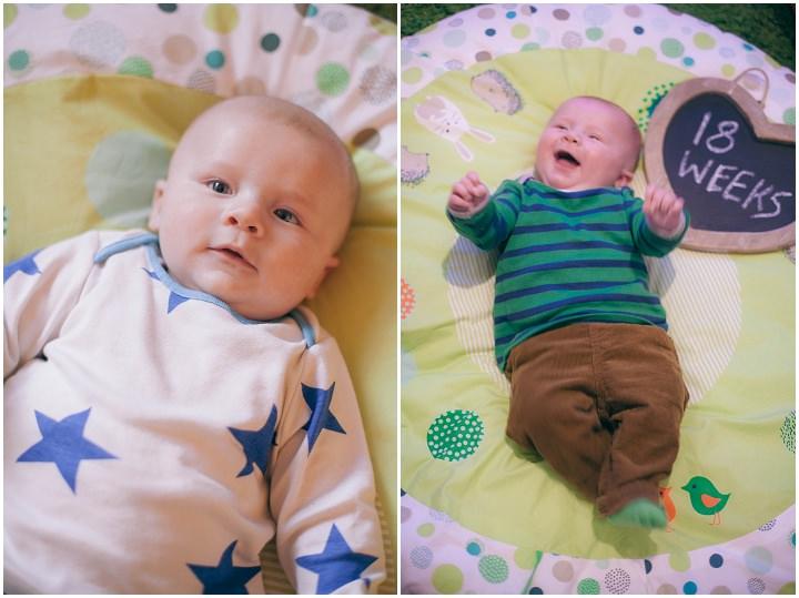 22 Dexter 2 - 6 months