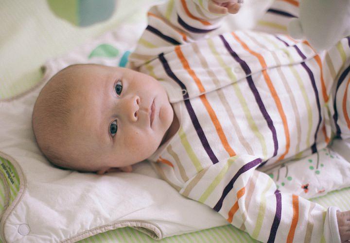 3 Dexter 2 - 6 months