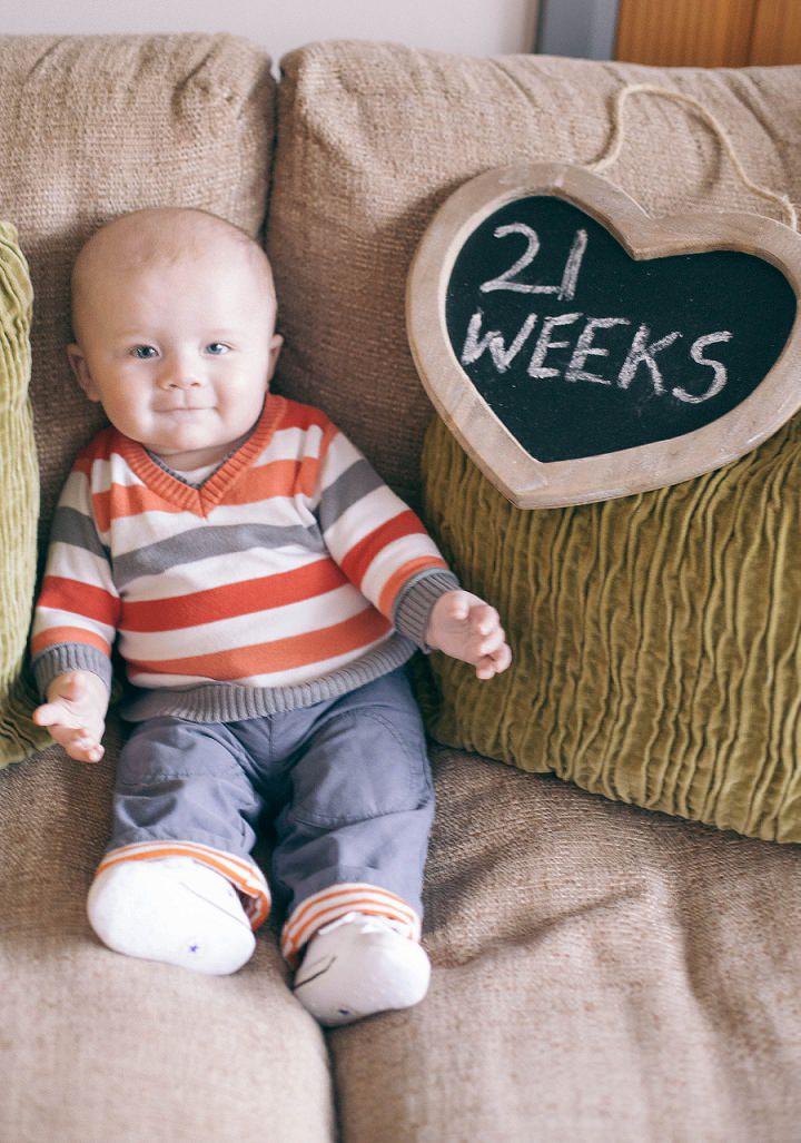 36 Dexter 2 - 6 months
