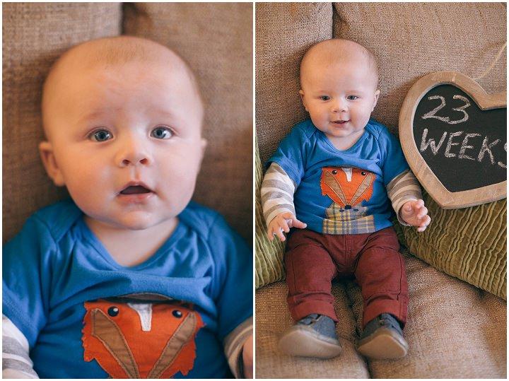 39 Dexter 2 - 6 months