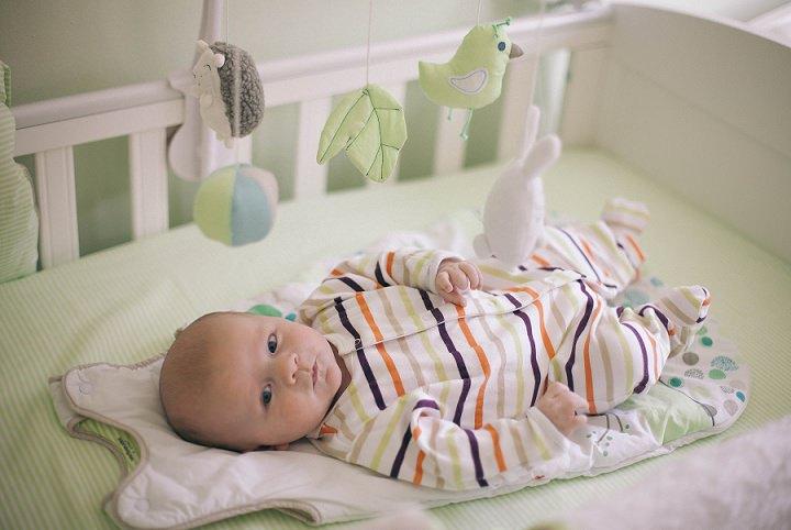 4 Dexter 2 - 6 months
