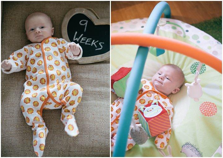 5 Dexter 2 - 6 months