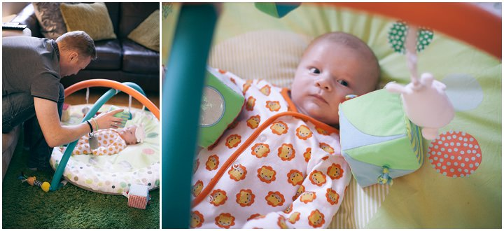 6 Dexter 2 - 6 months