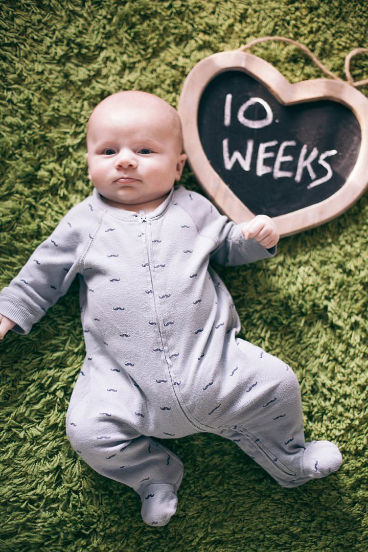 7 Dexter 2 - 6 months