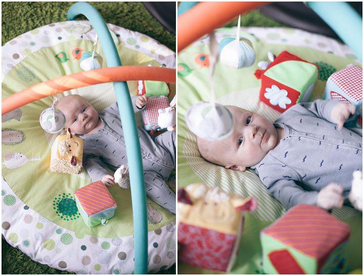 8 Dexter 2 - 6 months